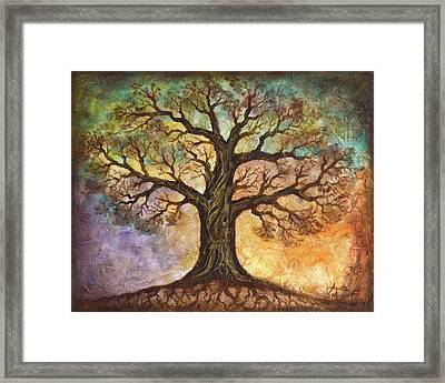 Seasons Of Life Framed Print