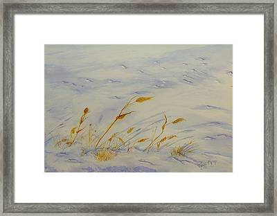 Seasons Past Framed Print by Peggy King