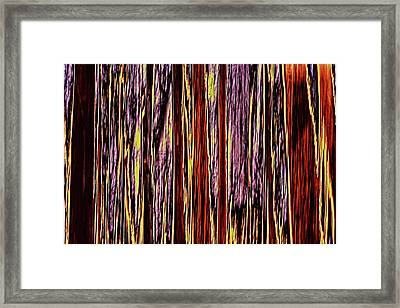 Framed Print featuring the photograph Seasons by Tony Beck