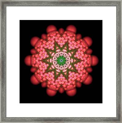 Seastar Lightmandala  Framed Print