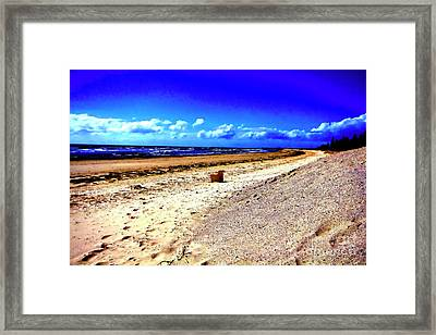 Framed Print featuring the photograph Seat For One by Douglas Barnard