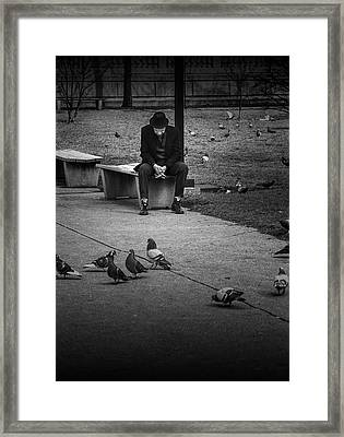 Seated Man With Park Pigeons Framed Print