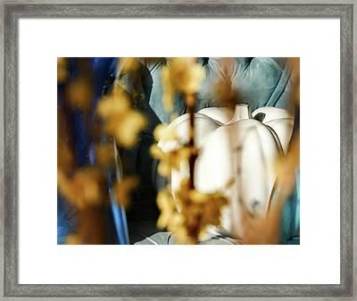 Seated Pumpkin -  Framed Print