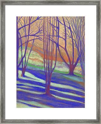 Seattle Arboretum Framed Print