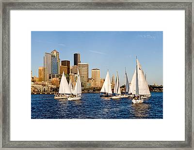 Seattle Sailboats Framed Print by Tom Dowd