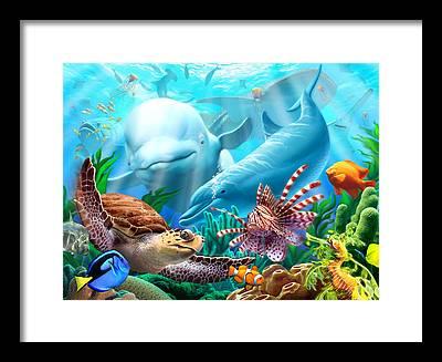 Sea Lion Framed Prints