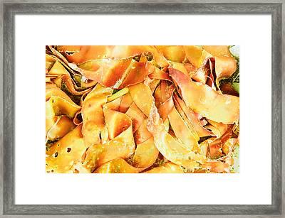 Seaweed Framed Print by Tom Gowanlock