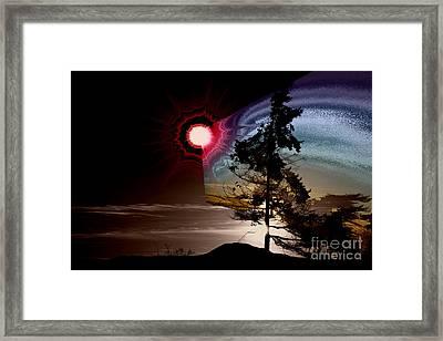 Sechelt Tree Stardust Framed Print