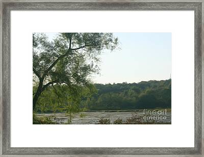 Secluded Marsh Framed Print