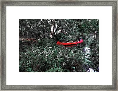 Secluded Spot Framed Print by David Patterson