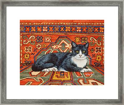 Second Carpet Cat Patch Framed Print by Ditz