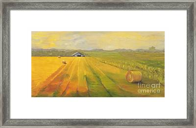 Second Cutting Framed Print by Amy Welborn