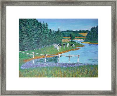 Second Peninsula Cows Framed Print by Rae  Smith
