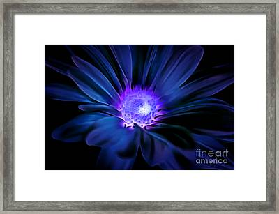 Secret Admirer Framed Print by Krissy Katsimbras
