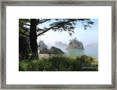 Secret Beach 1 Framed Print