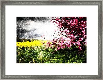 Secret Garden Framed Print by Andrea Barbieri