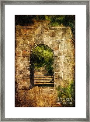 Secret Garden Framed Print by Lois Bryan