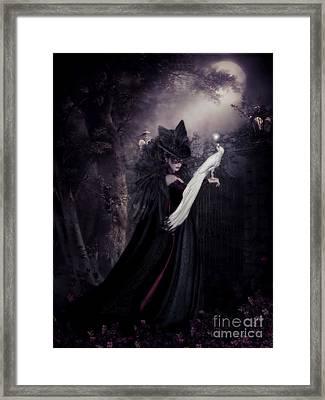 Secret Garden Framed Print by Shanina Conway