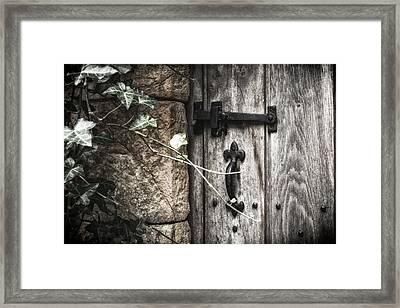 Framed Print featuring the photograph Secret Garden by Stewart Scott