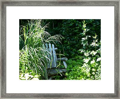 Secret Garden Framed Print by Tina M Wenger