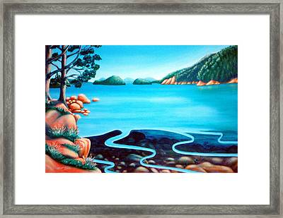 Secret Snapper Spot 3 Framed Print by Barbara Stirrup