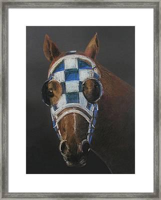 Secretariat - Jewel Of The 1973 Triple Crown Framed Print by Arline Wagner