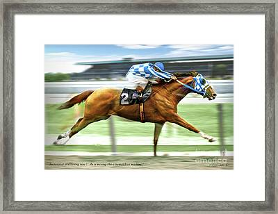 Secretariat On The Back Stretch At The Belmont Stakes Framed Print