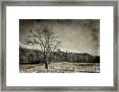 Secrets In The Valley Framed Print by Michael Eingle
