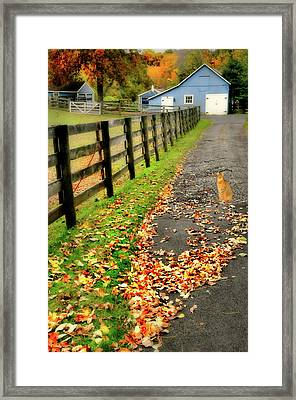 Security Guard Framed Print by Diana Angstadt