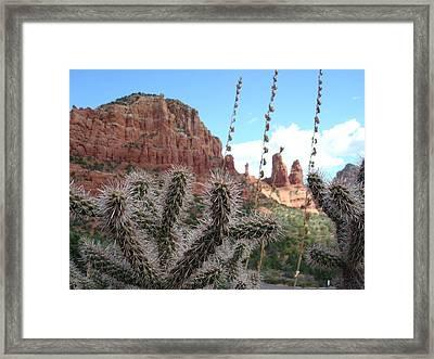 Sedona's Beauty Framed Print