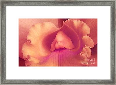 Seduction Framed Print by James Temple