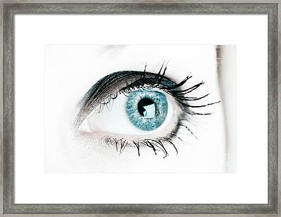See Framed Print by Jt PhotoDesign