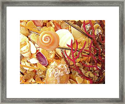 Framed Print featuring the photograph See World by Laura Brightwood