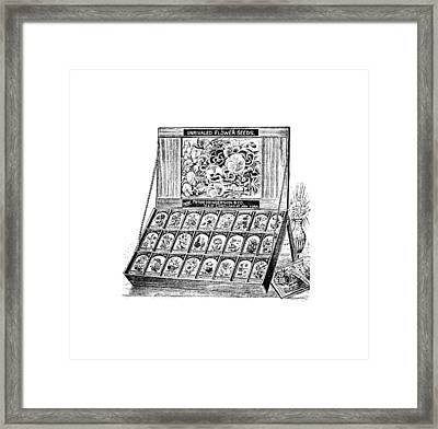 Framed Print featuring the drawing Seed Bank by ReInVintaged