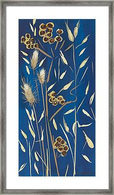 Seed Pods And Grasses Framed Print by Sarah Gillard