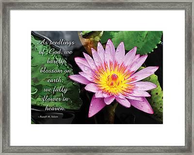 Seedlings Of God Framed Print