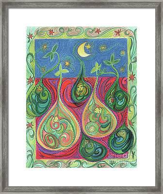Seeds By Jrr Framed Print