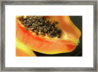 Seeds Of The Tropics Framed Print