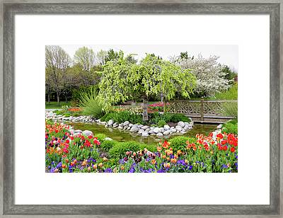 Framed Print featuring the photograph Seeing Beauty In All Things by James Steele