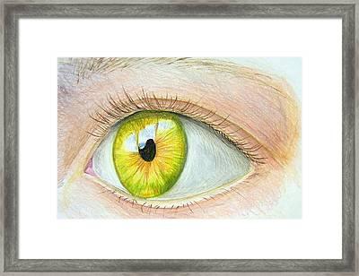 Seeing It Framed Print by Heidi Copeman