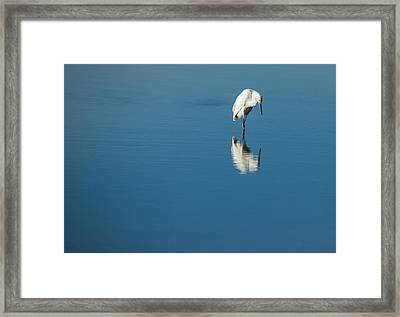 Seeing Self Image Framed Print
