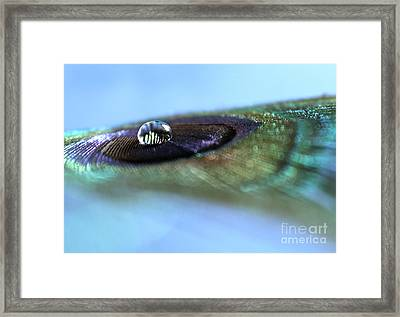 Seek Truth Framed Print by Krissy Katsimbras