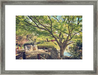 Seeking Truth Framed Print by Laurie Search