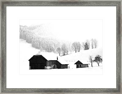 Seen Many Storms Framed Print by Sabine Jacobs