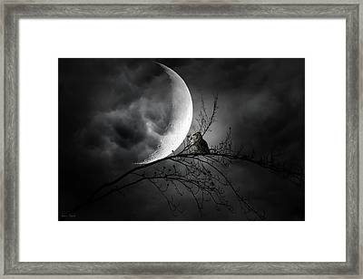 Seer Of Souls Framed Print by Lourry Legarde