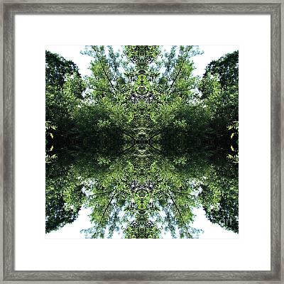 Sees All Framed Print