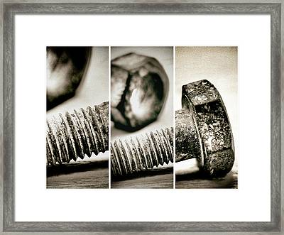 Segmented Framed Print by Tom Druin
