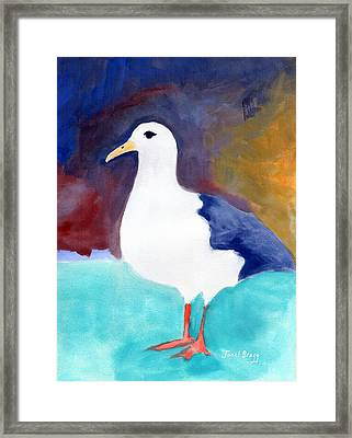 Segull From Anacortes 1 Framed Print