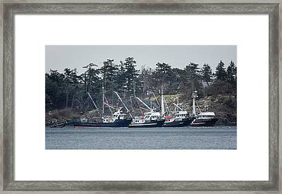 Seiners In Nw Bay Framed Print by Randy Hall