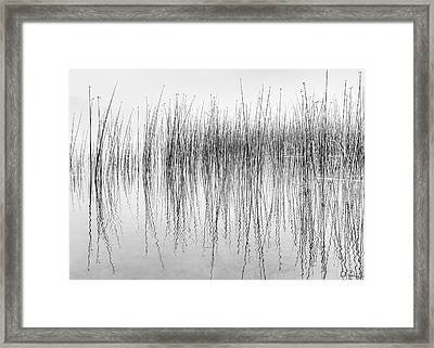 Seismograph Framed Print